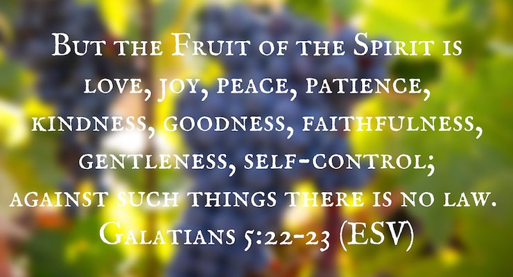 """But the Fruit of the Spirit is love, joy, peace, patience, kindness, goodness, faithfulness, gentleness, self-control; against such things there is no law."" Galatians 5:22–23 (ESV)"