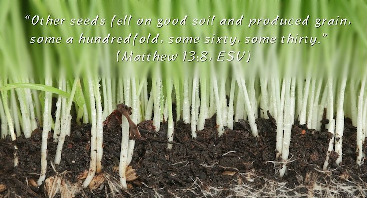 """Other seeds fell on good soil and produced grain, some a hundredfold, some sixty, some thirty."" (Matthew 13:8, ESV)"