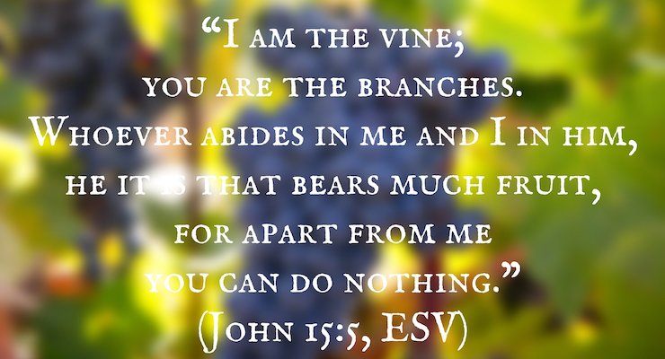 """I am the vine; you are the branches. Whoever abides in me and I in him, he it is that bears much fruit, for apart from me you can do nothing."" (John 15:5, ESV)"
