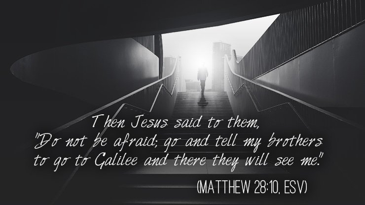 """Then Jesus said to them, ""Do not be afraid; go and tell my brothers to go to Galilee, and there they will see me."""" (Matthew 28:10, ESV)"