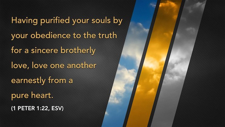 """Having purified your souls by your obedience to the truth for a sincere brotherly love, love one another earnestly from a pure heart."" (1 Peter 1:22, ESV)"